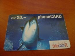Nice Card, Shark - Liechtenstein