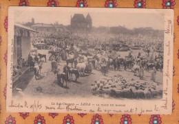 1 Cpa Algérie - Le Sud Oranais - SAIDA - La Place Du Marché - Saïda