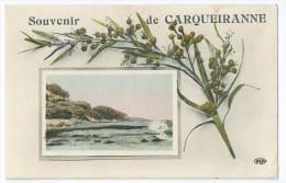 Cpa Bon Etat ,  Souvenir De Carqueiranne , Courrier Au Verso , P'tit Pli Bas Droit ,  Carte Rare - Carqueiranne