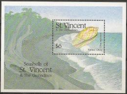 SAINT VINCENT & GRENADINES Shells - Conchiglie