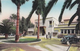 Maroc - Marrakech - Jardin Façade Hôtel Mamounia - Automobiles - Marrakesh
