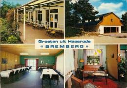 HAASRODE-BREMBERG - Oud-Heverlee