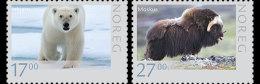 NORWAY 2011   Wildlife In Norway VI 2011 BIRD - Noruega
