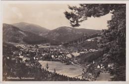 ALLEMAGNE DEUTSCHLAND   BAD HERRENHALB Schwarzwald - Bad Herrenalb