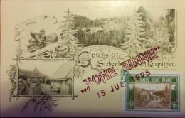 HOHE RINNE,KURHAUS HOHE RINNE,PALTINIS LOCAL POST STAMP,KARPATHEN,1995,VERY RARE ,ROMANIA - Emissions Locales