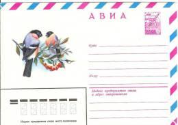 Russia USSR 1979 Fauna Bird Birds Eurasian Bullfinch Gimpel, Berry Berries - 1923-1991 USSR