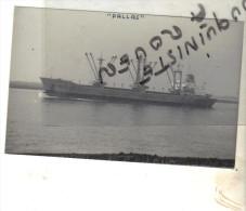 """Photo bateau navire """" PALLAS """" SCHIFFPARTENVEREINIGURJ FLENSBURG ALLEMAGNE 1971 RENDEBURG"""