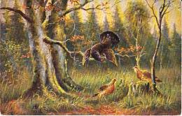 Chasse, Hunting   Auerhahn  Henne   Oiseau  Geflügel  Illustrateur   Old  Postcard. Cpa. - Hunting