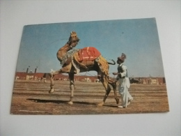 STORIA POSTALE ANNULLO ROSSO PAKISTAN HAWKS BAY BEACH KARACHI DROMEDARIO - Pakistan