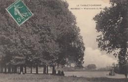CPA - Moissac - Promenade Du Moulin - Moissac