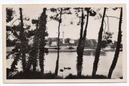 """BENODET--1951--Les Bords De L´Odet (phare ??)--Beau Cachet Daguin""""BENODET-L´éden De La Côte Des Légendes"""" - Bénodet"""