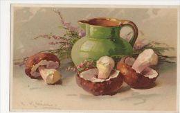 C. Klein, Mushrooms, Meissner & Buch 1405 Postcard, B265 - Ilustradores & Fotógrafos