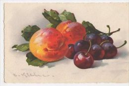 C. Klein, , Fruit, Alpha 236 Art Postcard, B265 - Ilustradores & Fotógrafos