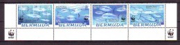 Bermuda WWF Fauna Animals Bluefin Tuna Mi No 877-80 MNH - Unused Stamps