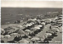 E3198 San Benedetto Del Tronto (Ascoli Piceno) - La Spiaggia - Beach Plage Strand Playa / Non Viaggiata - Altre Città