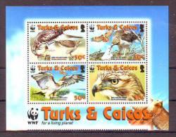 Turks&Caicos  WWF Fauna Animals Birds Red-tailed Hawk MNH - W.W.F.