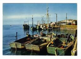 50 Carteret N°340 Le Port Vers La Jetée Et Les Dunes Bateaux Aux Noms De Fée Des Roches Véronique Sud Est - Carteret