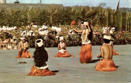 89599 - Polynésie Française   Tahiti     Tamouré Executé Par Le Groupe  Tiare De Tahiti  Juillet 1970 - Polynésie Française