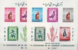 Imperf.Landwirtschaft 1962 Afghanistan Block 22+23 B ** 8€ Hund Hahn Jute Schaf Hoja Fauna Blocs Sheets Bf Afghanes - Afghanistan