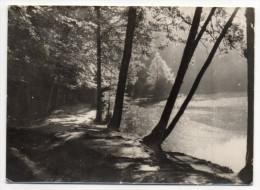 BELLEME--Etang De La Herse ,cpsm 15 X 10  Photo J.Sassier--carte Pas Très Courante - Autres Communes