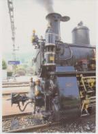 Schweiz Swizerland Suisse Svizzera, Ct. Bern, Dampflokomotive HG 3/3 1067 (ex Brünig) 1910, Ballenberg-Dampfbahn Brienz - Bahnhöfe Mit Zügen