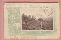 RARE DOCUMENT - POSTCARD BOER WAR - CAMP PRISONERS OF WAR CAMP - RAGAMA CEYLON 1902 POSTALLY USED - Guerres - Autres