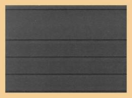 1000 KOBRA-Versand-Einsteckkarten 156 X 112 Mm Mit Deckblatt Nr. VF4G - Classificatori
