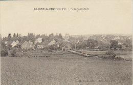 """1920   Bligny Le Sec   """" Vue Générale """" ( Fontaine Les Dijon  ) - Dijon"""
