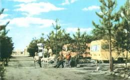 POPPEL - TULDERHEYDE - Redicentiecaravanning - Camping Recreatieoord - Ravels