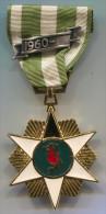 VIETNAM - BOI TINH CAMPAIGN, Medal - Médailles & Décorations