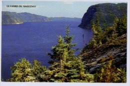 LE FJORD DU SAGUENAY - Saguenay
