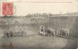 Réf : D-15-2928 : ANNAM HUE ELEPHANTS COMBAT DE TIGRE - Vietnam