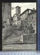 338/566  CARTOLINA POSTALE  1958 ORVINIO SABINA PER PIACENZA VERA FOTOGRAFIA