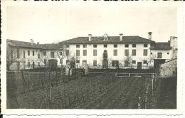 FRIULI VENEZIA GIULIA  Fotografia Della Casa Di Marina  Potrebbe Trattarsi Di Cervignano Udine  14x8,5  2 Scans - Luoghi
