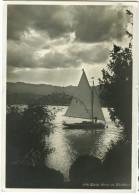 Zurich Partie Am Zurichhorn Old Postcard Travelled 1931 Bb - ZH Zurich