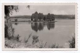 MEYRIGNAC-1951--L´étang De Mérignac--La Baignade ,cpsm 14 X 9 N°4137  éd Verdier................à Saisir - Autres Communes