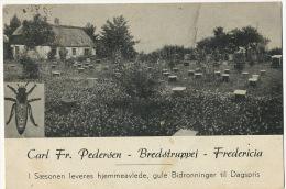 Carl Fr. Pedersen Bredstrupvej Fredericia Apiculture Ruche Beekeeping P. Used - Denmark