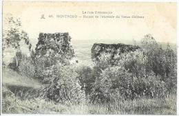MONTROND Ruines De L´enceinte Du Vieux Chateau N° 28  - Cpa Ancètre Jura - Frankrijk