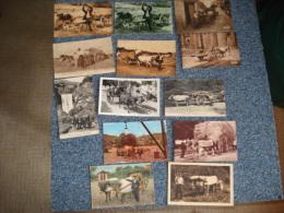 Lot De  32 Cartes Postales , Attelage De Boeufs..voir Details - Cartes Postales