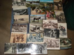 Lot De 22 Cartes Postales , Sur Le Theme Des Anes Voir Details - Cartes Postales