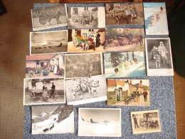 Lot De 16 Cartes Postales , Sur Le Theme Des Attelages De Chiens  Voir Details - 5 - 99 Postcards