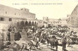 Cpa Saffi Maroc Animaux Attendant Leur Chargement - Otros