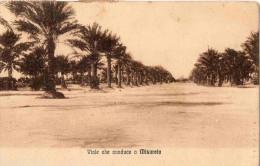 CARTOLINA POSTALE -BENGASI-(CIRENAICA)-26-1-1922-FRONTE :VIALE CHE CONDUCE A MISURATA - Libia
