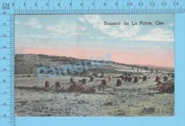 La Patrie Quebec ( Souvenir De La Patrie  A Voyagé En 1939 RARE Poste Restante Marcophilie ) Post Card Postcard 2 Scans - Altri