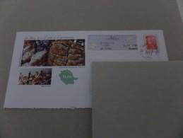 Enveloppe Vignette Albi Lapanouse,Marianne De Beaujard,gastronomie Du Tarn - 2000 «Avions En Papier»
