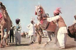 Pakistan - Animaux - Chevaux - Chameaux - Dancing Horese - Dancing Camel - Semi Moderne Grand Format - Pakistan