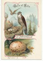 CHROMOS LES OISEAUX, LEURS OEUFS ET LEURS NIDS - LA CRECERELLE. - Trade Cards