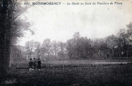 MONTMORENCY LE STADE AU FOND DU PAVILLON DE FLORE - Montmorency