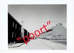 OOIGEM - Prachtige Foto Dd. 1955 - 14,5 X 10,5 Cm. - Wielsbeke