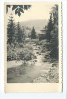 PHOTO 13,5 X 9 Cm Amateur Artistique Des Années 1950.. TORRENT De MONTAGNE - Places